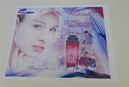 깃발 천으로 인쇄 된 배너 1.6m (5 피트) 에코 솔벤트 프린터 WER-ES160 4