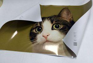 1.6m 에코 솔벤트 프린터의 비닐 인쇄 견본